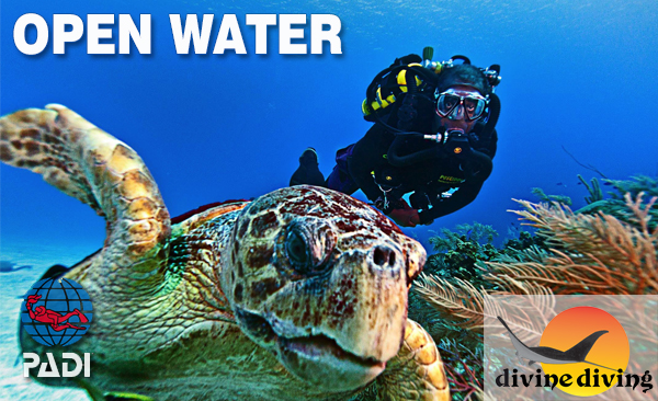 padi-open-water-course